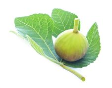 Presentation Of Fig And Fig Leaf On A White Stock Images