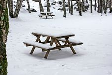 Free Snow On Wooden Benches Stock Images - 17433234