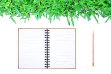 Free Grass Frame On White Background With Book & Pencil Royalty Free Stock Photography - 17434697