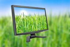 Free Monitor Royalty Free Stock Images - 17437289