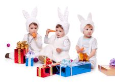 Free New Year Rabbit Royalty Free Stock Images - 17439389
