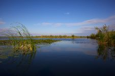 Channel In The Danube Delta, Romania Royalty Free Stock Images