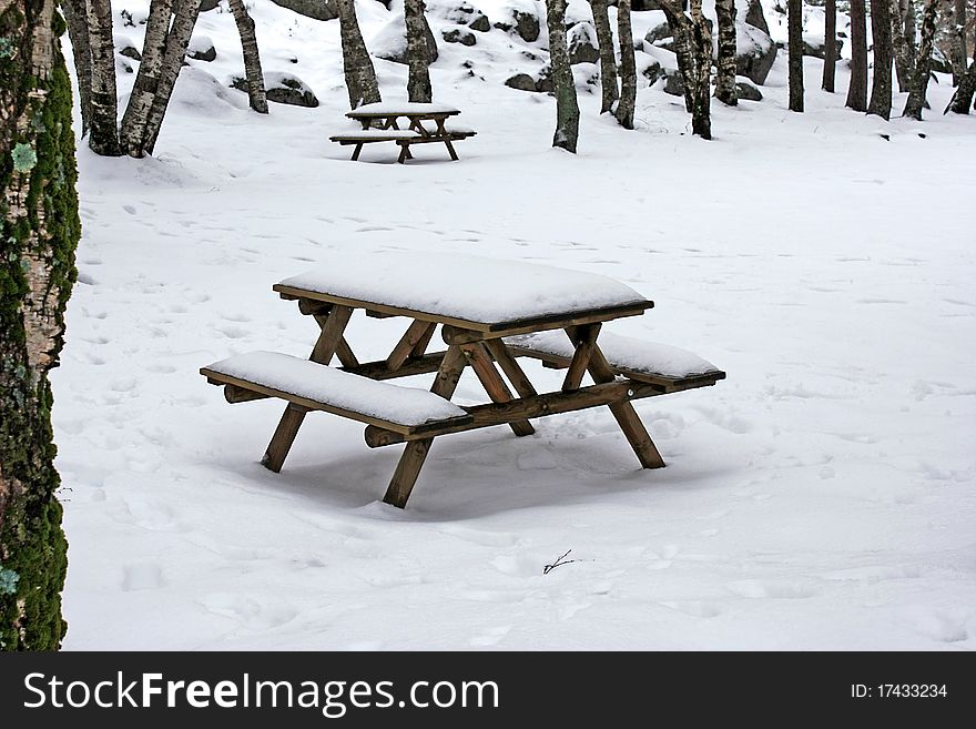 Snow on wooden benches
