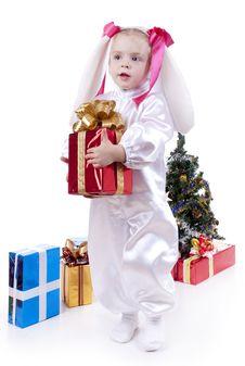 Free Bunny Stock Image - 17440261