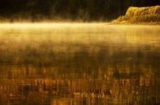 Free Lake, Forest And Fog Stock Images - 17442434