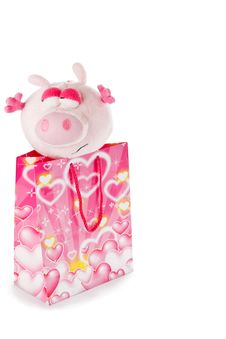 Free Toy Piglet As Christmas Gift Isolated On White Stock Photo - 17446940