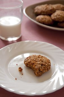 Free Homemade Oatmeal Cookies With Crumbs Stock Photos - 17447173