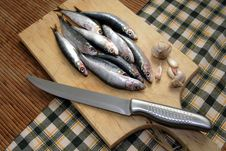 Fresh Fish On Cutting Board Stock Photography