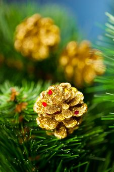 Free Branch Of Christmas Tree Royalty Free Stock Photo - 17447945