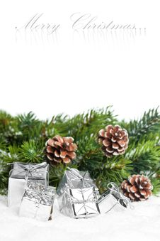 Free Branch Of Christmas Tree Stock Photos - 17448003