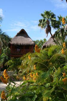 Free Palapa In Playa Del Carmen - Mexico Stock Photography - 17448162
