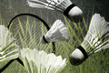 Free Badminton Action Collage Stock Photography - 17452032
