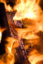 Free Close-up Firewood In Fire Royalty Free Stock Images - 17452489