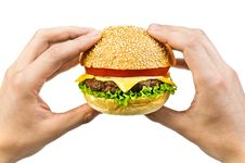 Free Cheeseburger Stock Images - 17453054
