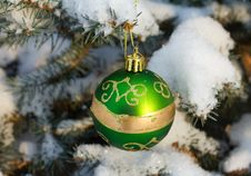 Free Christmas Decoration On Fir Branch Stock Image - 17453791