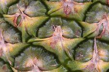 Free Pineapple Stock Image - 17453801