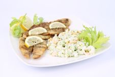 Free Fried Fish With Side Salad Royalty Free Stock Image - 17454986