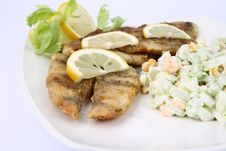 Free Fried Fish With Side Salad Stock Photo - 17455030