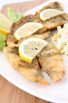 Fried Fish With Side Salad Stock Image