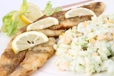 Fried Fish With Side Salad Stock Photography