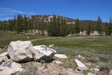 Free Soda Springs, Yosemite NP Royalty Free Stock Image - 17456826