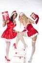 Free Two Sexy Santa Girls Having Fun Stock Image - 17469901