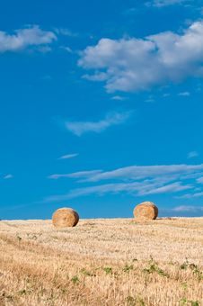 Free Hay Bales In Early Morning Stock Photos - 17465993