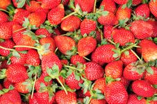 Free Strawberry Royalty Free Stock Photos - 17467208