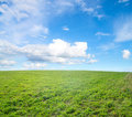 Free Green Field Under Midday Sun Royalty Free Stock Photography - 17474007