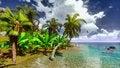 Free Hawaiian Paradise Stock Image - 17476931