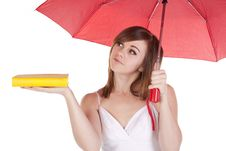 Holding Book Umbrella Stock Photography