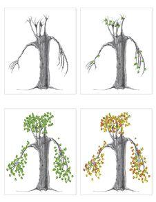 Free Seasons On A Tree Royalty Free Stock Photo - 17475975