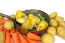 Free Duck Saucepan Two Royalty Free Stock Photography - 17476567