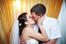Free Romantic Kiss Happy Bride And Groom Royalty Free Stock Photography - 17476697