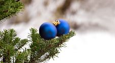 Free Two Christmas Glass Balls On The Tree Royalty Free Stock Photo - 17478475