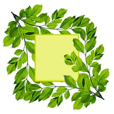 Free Green Leaf Frame Isolated Stock Image - 17478861