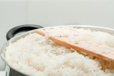 Free Rice Stock Photography - 17479512