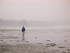 Free Walking Through The Mist On A Beach Stock Photography - 17479682