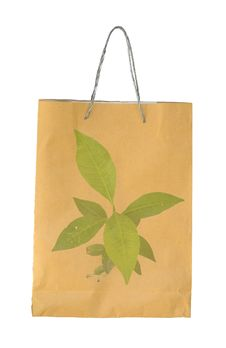 Free Concept Picture Of Recycle Paper Bag Stock Photos - 17479713
