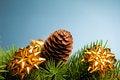 Free Branch Of Christmas Tree Stock Photos - 17481983