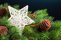 Free Branch Of Christmas Tree Stock Photo - 17482140