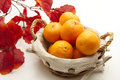 Free Tangerines In The Basket Stock Photography - 17489062
