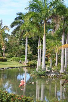 Free Tropical Resort Stock Image - 17480691