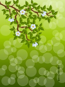 Free Floral Background Stock Photos - 17481443