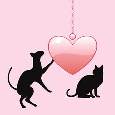 Black Cats With Heart Royalty Free Stock Images