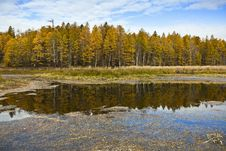 Free Lake And Forest In Autumn Stock Photography - 17486922