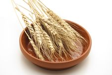 Free Wheat Ears Royalty Free Stock Photography - 17487057