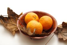 Free Tangerines And Leaves Stock Image - 17488891