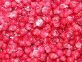 Free Frozen Berries Stock Photo - 17493190