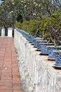 Free Bonsai Royalty Free Stock Photography - 17498597